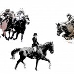 Different Styles of Horse Riding