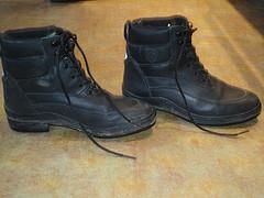 short paddock boots