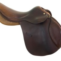 choosing the right saddle